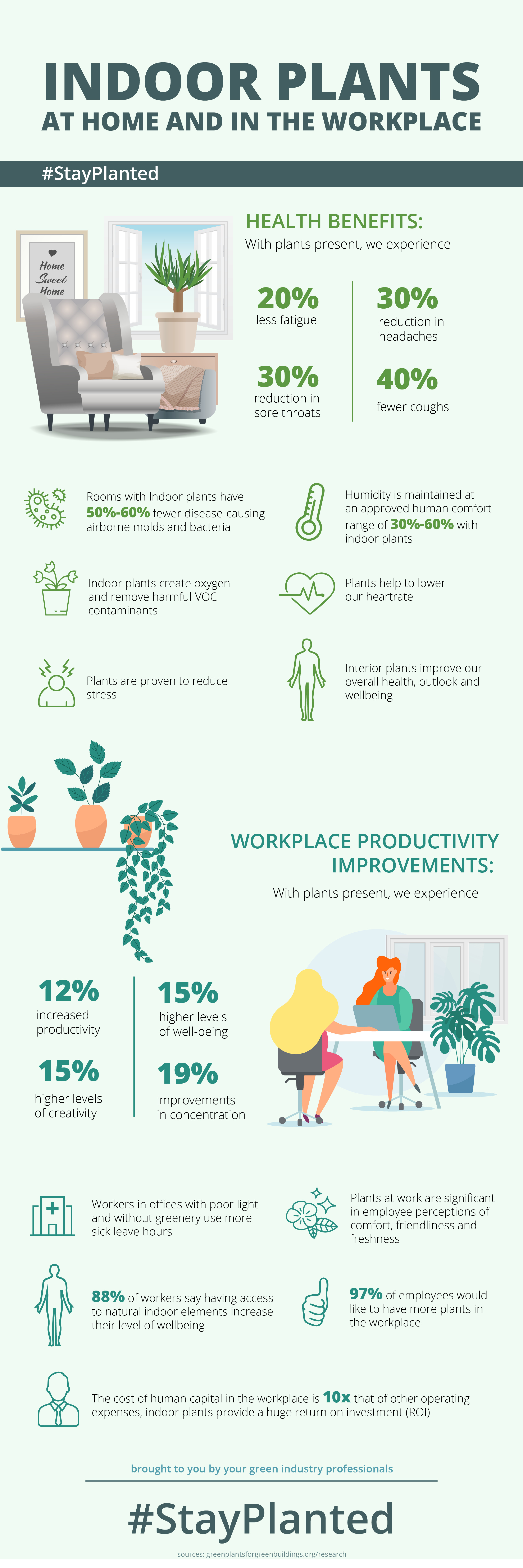 Indoor Plants at Home & In the Workplace