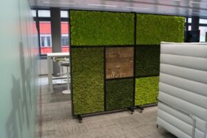 Avant Garden Green Screen for the Workplace